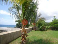 居外网在售牙买加7卧7卫的房产USD 1,600 / 月