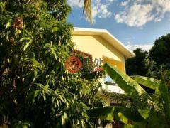 居外网在售海地4卧3卫的房产总占地251平方米USD 280,000