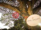 泰国清迈府清迈的房产,清迈DIYA VALLEY SARAPHI 双层联排豪华精装大别墅,尾盘特价56万起,编号57012497