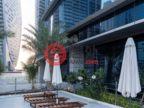 阿联酋迪拜迪拜的商业地产,Business Bay,编号54568926