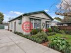 新西兰的房产,30 Buffon Street,编号49409920