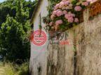 葡萄牙莱里亚Vestiaria的公寓,编号57143858