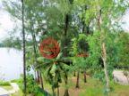 泰国普吉府Choeng Thale的房产,Laguna,编号55869159