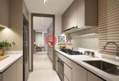 新加坡东北地区新加坡的房产,编号38805958