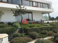 居外网在售智利4卧6卫的房产总占地1840平方米CLP 925,500,000
