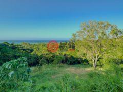 居外网在售洪都拉斯RoatánUSD 80,000总占地1012平方米的土地