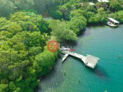 居外网在售洪都拉斯RoatánUSD 199,000总占地8903平方米的土地